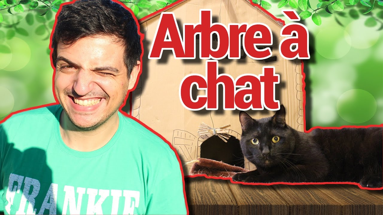 Arbre A Chat En Bois Fait Maison tuto meilleur arbre a chat / diy best cat tree [022/100]