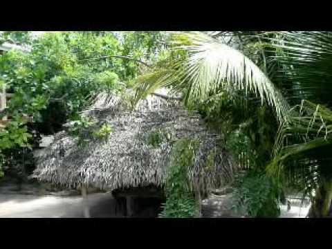 Silver Leaf Cabana Vacation Rental-Placencia Belize -Inside Cabana Tour