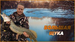 О такой рыбалке можно мечтать БОЛЬШАЯ ЩУКА на озере