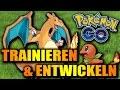 POKEMON GO GUIDE - Trainieren & Entwickeln Tutorial Deutsch Tipps & Tricks German Gameplay Anfänger