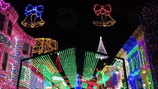The Main Street Mouse Presents the Osborne Family Spectacle of Dancing Lights