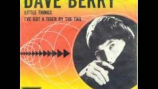 Dave Berry Little Things
