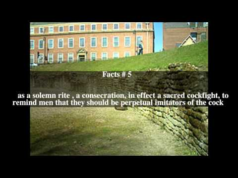 Chester Roman Amphitheatre Top # 7 Facts