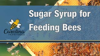 how to feed bees sugar water for bees preparing sugar water to feed bees