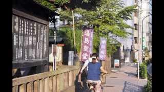 御茶ノ水・湯島聖堂・聖橋周辺散策