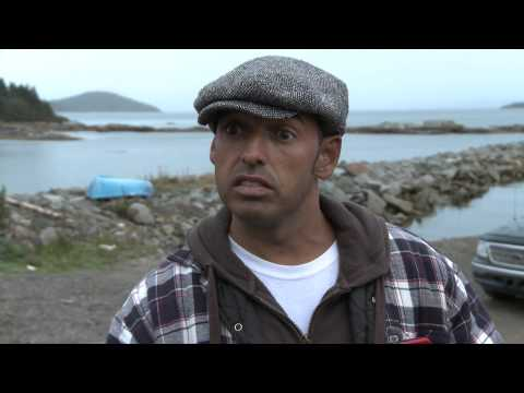 Majumder Manor Season 2  How to Filet a Fish with Shaun Majumder