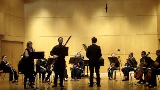 Concerto in G Major for Oboe, Bassoon, Strings and Continuo by Antonio Vivaldi - Largo