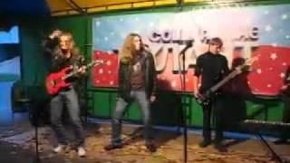 Бременские музыканты (cover version).mp4