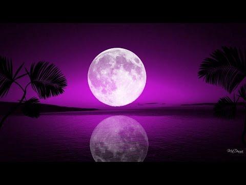 Chill Bass - Project Purple Moon