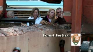 10th Annual Vermont Fine Furniture, Woodworking & Forest Festival