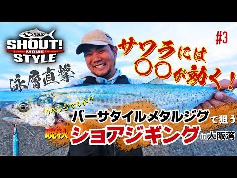 大阪湾、秋の沖堤防でRAISE(レイズ)を使ったショアジギングin泉佐野一文字#3