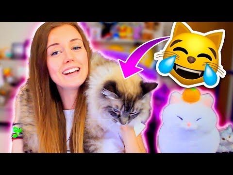 🙀WEIRDEST CAT GAMES EVER!😹