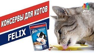 Корм для кошек Пурина Феликс | Обзор корма для кошек | Purina Felix cats food review