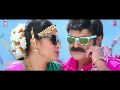 This is a private party - Balayya version