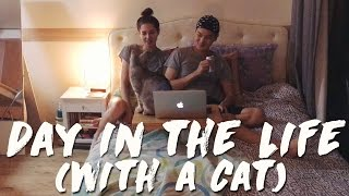 Seoul, Korea: DAY IN THE LIFE (With a Cat) 국제커플 고양이와의 일생의 하루 (자막 CC)