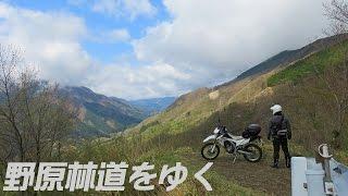 【巌道峠】野原林道をゆく CRF250L thumbnail