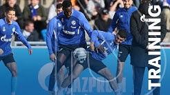 Abschlusstraining vor dem Revierderby   FC Schalke 04