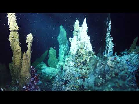 ROV SuBastian Dive Video 4K Highlights ~ FK171110 Underwater Fire ~ Hydrothermal Vents