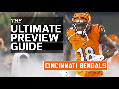 Bengals 2016 Team Preview (Infographic) | NFL