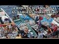 Passeio No Mercado De Peixe Manaus Amazonas – Feira Da Pan Air E Manaus Moderna