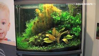Planted aquariums of Heimtiermesse 2015, Hannover - part 12