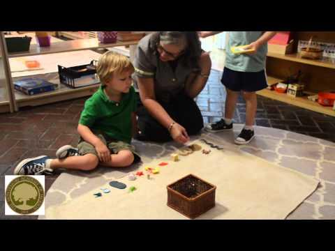 The Montessori Academy of Jackson