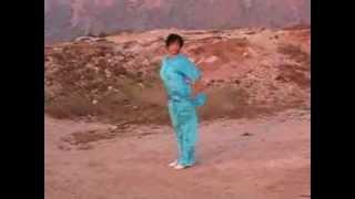 马氏通备武艺 - Ma Style Tongbei Martial Arts: Pigua Quan, Master She Yinge