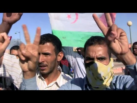 La Badil - Western Sahara documentary (Dancing Turtle Films)