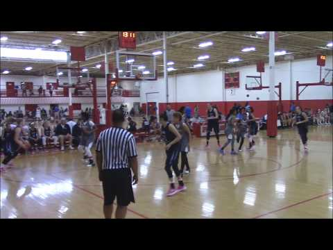 Julia Martinez #11 2019 - Illinois Lady Lightning Platinum Seberger - May '17(Gym Rats Invitational)