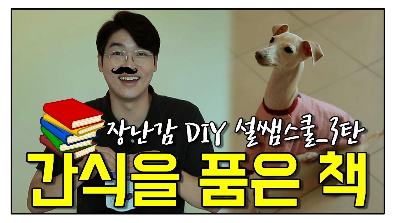설채현의 10분 장난감 3탄(간식을 품은 책ㅎ_#좋은 보호자)
