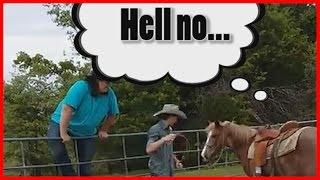 Funny animal fails: heavy set-people vs horses edition