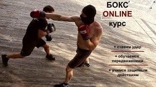 Тренировки по боксу. Online курс