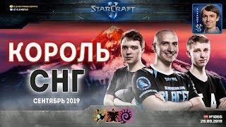 Король СНГ в StarCraft II: DIMAGA снова в деле! Сентябрь - 2019