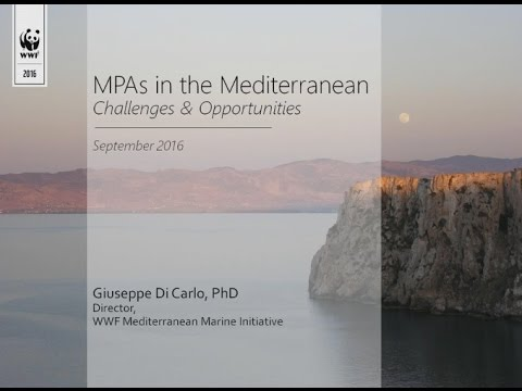 Challenges and opportunities of marine protected areas in the Mediterranean