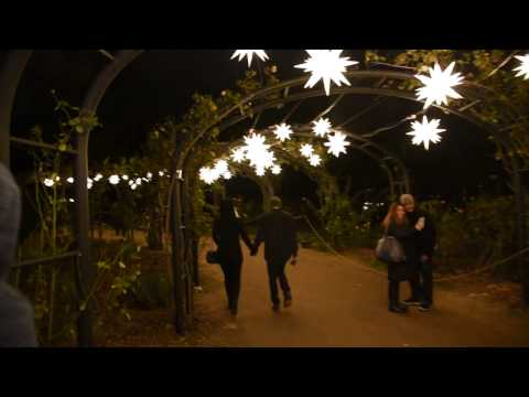 Descanso Gardens: Path of Stars 1/2/17