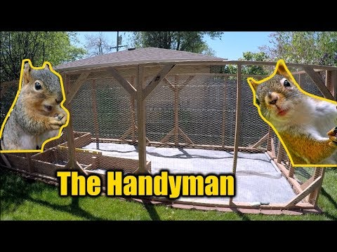 Squirrel/Rabbit Proof Garden Enclosure | THE HANDYMAN |