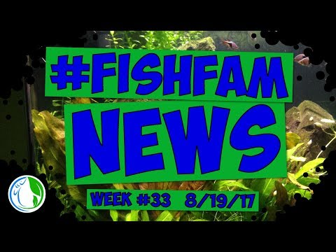 The Fish Family News For Week #33