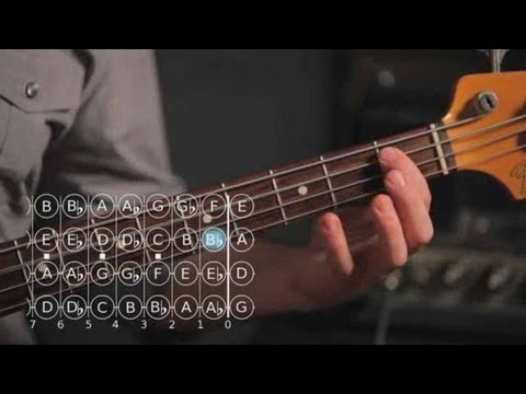 how-to-play-an-f-major-scale-|-bass-guitar