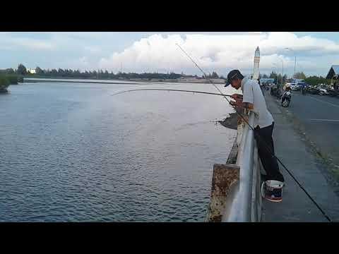Mancing mania di jembatan lamteh banda aceh