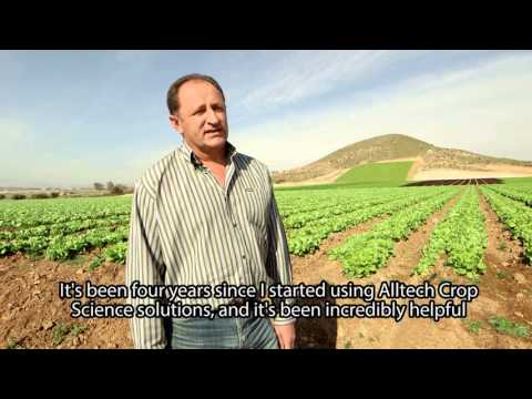 Farmer stories - Agropecuária Maifra- Lettuce Producer in Spain