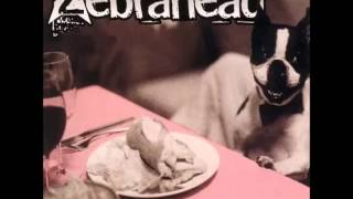 Zebrahead Hello Tomorrow Live 2004 Audio