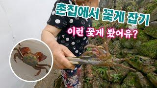 EP.15 촌집에서 꽃게 잡기