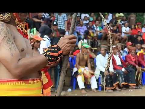 Tarian Caci adalah salah satu adat tradisional Manggarai ...