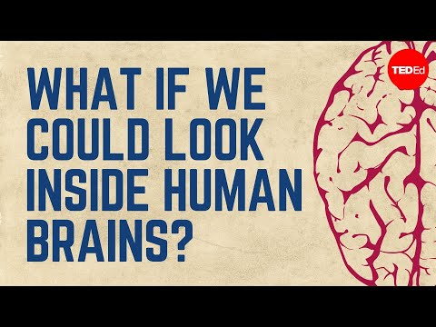 What if we could look inside human brains? - Moran Cerf