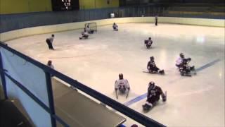 HC Sparta Praha sledge hokej vs SOHO Olomouc