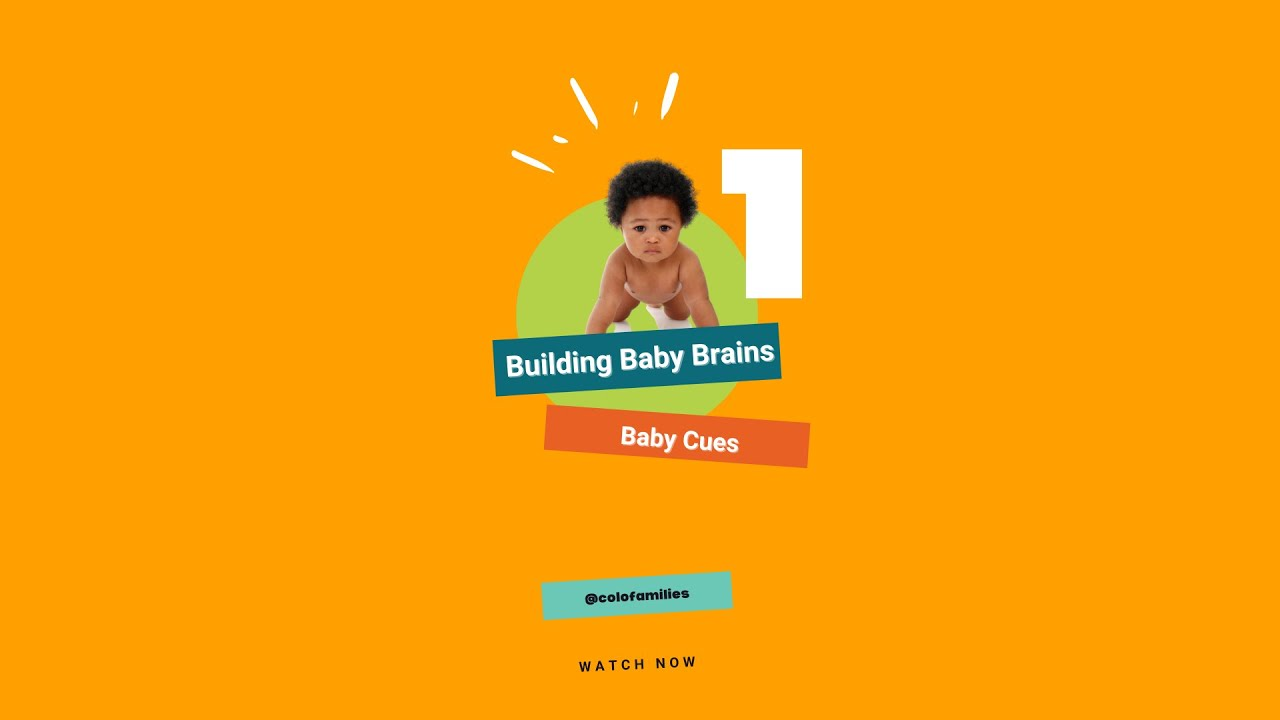 Building Baby Brains