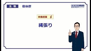 【高校生物】 個体群6 縄張り(19分)