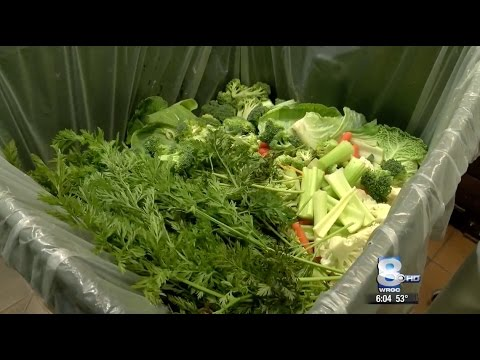 RIT on TV: Reducing Food Waste