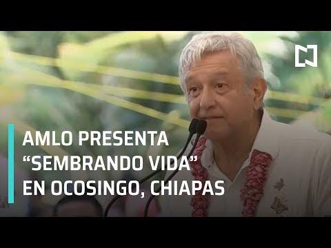 AMLO presenta programa Sembrando Vida en Nuevo Francisco León, Ocosingo, Chiapas