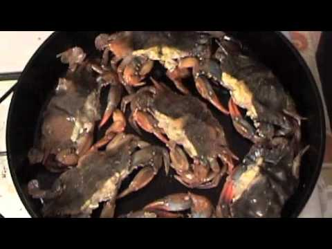 Soft Shell Crabs 101